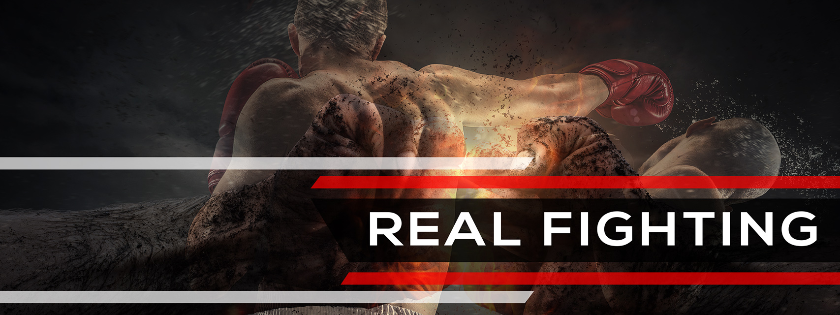 Real Fighting